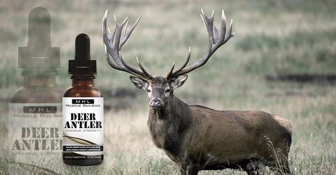 Deer Antler Maximum Strength Review – Does it Boost Testosterone?