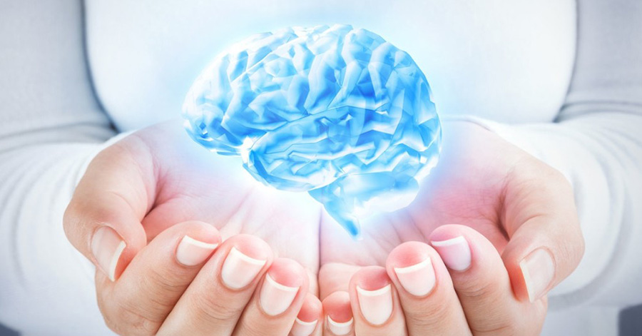 Brain Link Complex – How good is this supplement?