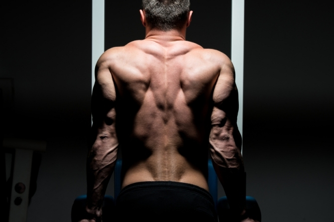 Is MuscleTech Clear Muscle Efficient?