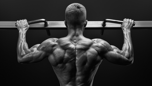 fit man with muscular back doing pull ups