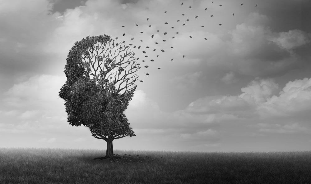 5 Botanicals That Can Help Treat Dementia