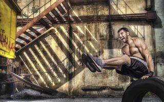 high testosterone workout