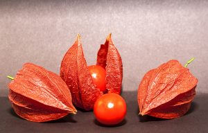7 Healthy Foods to Help Treat Premature Ejaculation