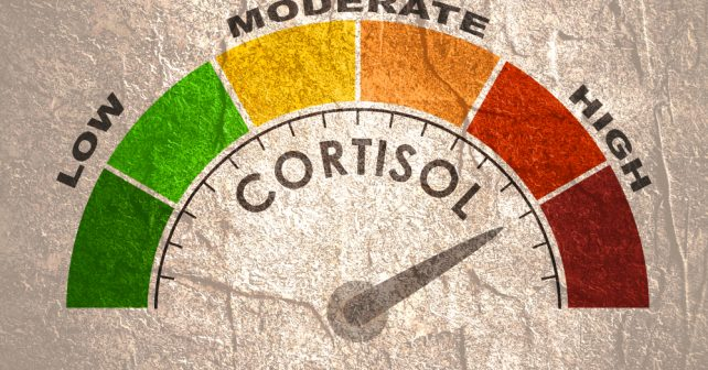 cortisol concept